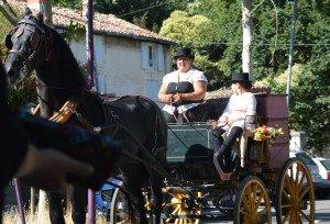 DSC_0295-1-Trop beau le cheval
